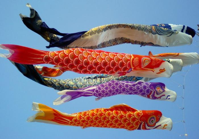 Knutselen lezen koken en bakken voor groot for Japanese fish flag